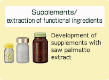 Supplements/extraction of functional ingredients: Development of supplements with saw palmetto extract