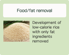 Food/fat removal: Development of low-calorie rice with only fat ingredients removed