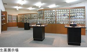 生薬展示場